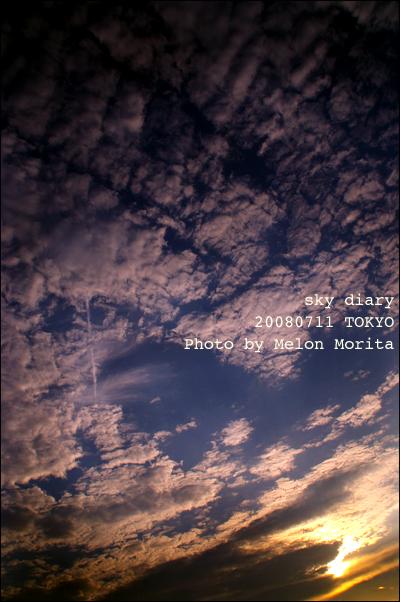 web20080711.jpg