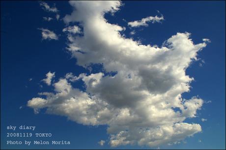 web20081119.jpg